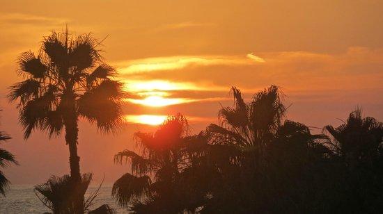 Leonardo Plaza Cypria Maris Beach Hotel & Spa: sunset from restaurant