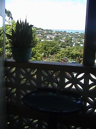Tahiti Airport Lodge : View while you clean your teeth