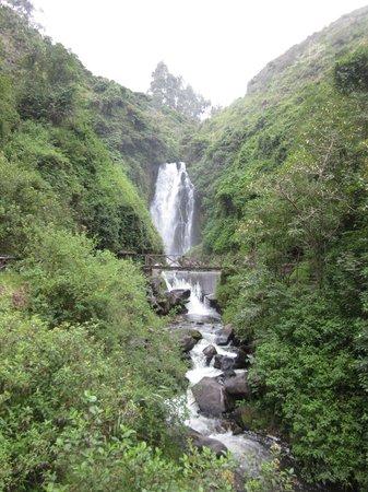 Peguche Waterfall: Waterfall