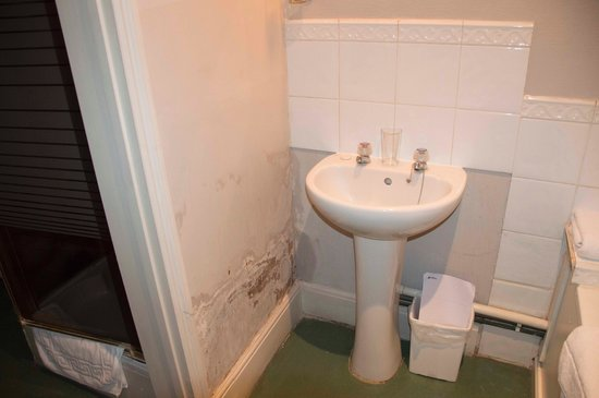 The Tree Hotel at Iffley : Damp wall next to sink