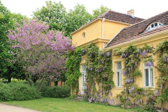 Parque Sanssouci: территория парка