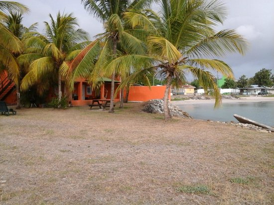 Bay Guesthouse : outside view of property