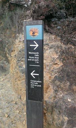 AAT Kings Sydney Day Tours: wentworth falls walk