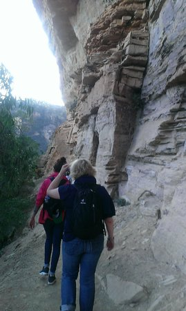 AAT Kings Sydney Day Tours: walk to wentworth falls