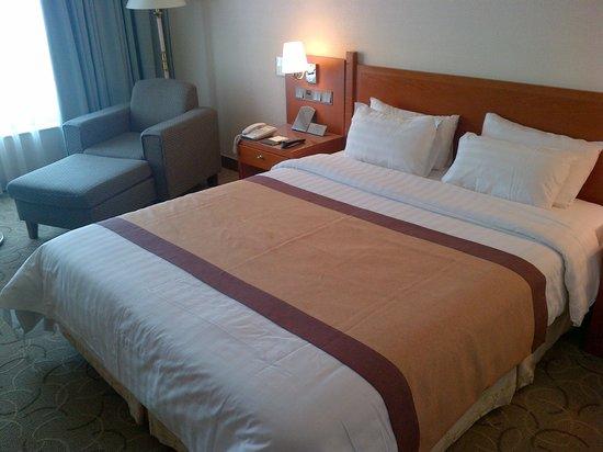 Hotel Paragon: la camera