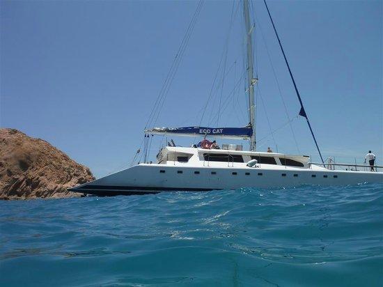Ecocat Catamaran Tours: Boat