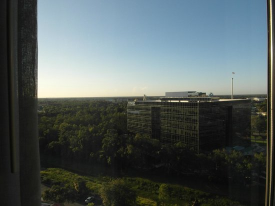 Doubletree by Hilton Orlando at SeaWorld: View forward