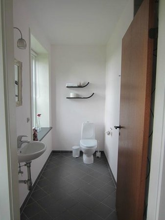 Ronhave Apartments: Room 2 - Bathroom (shower behind the door)