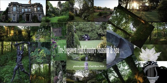 Tre-Ysgawen Hall, Country House Hotel and Spa : A Mixture Of Photos -courtesy of Paul Rees
