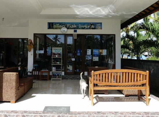 Two Fish Divers Lembongan: Two Fish Dive Center