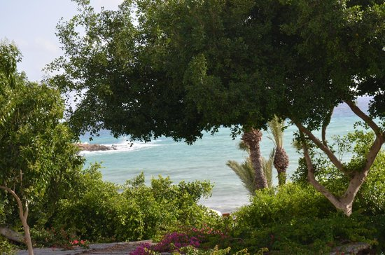 Coral Beach Hotel & Resort: море
