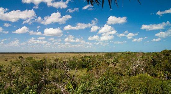 Yalahau Lagoon : Вид с вышки