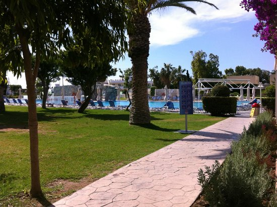 Sun Palace Hotel : Бассейн