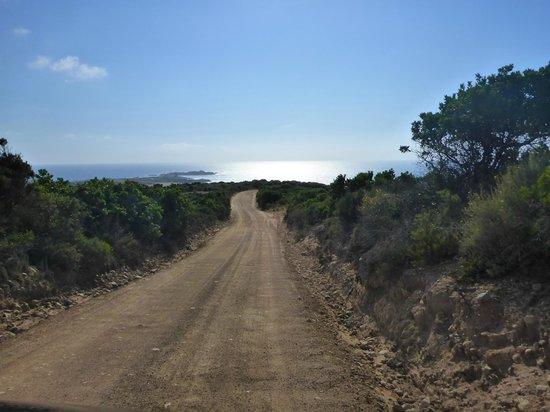 Calarossa Village: Accès par chemin de terre de 4 Km