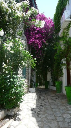 Casa De Maris Spa & Resort Hotel: Улицы Мармарис