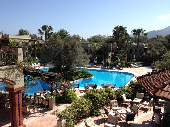 Hotel Zeytinada: Zicht op het zwembad