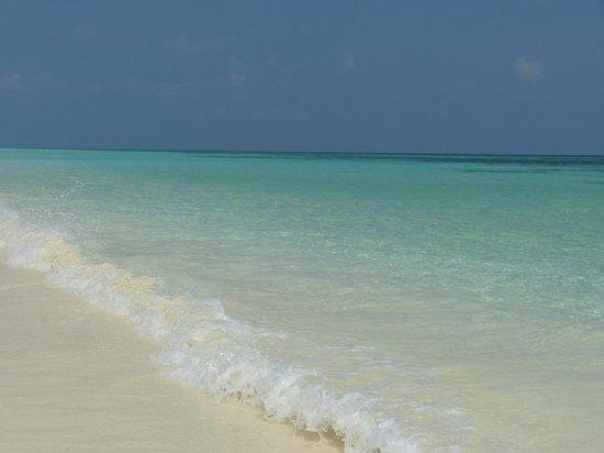 Kuredu Island Resort & Spa : Meer