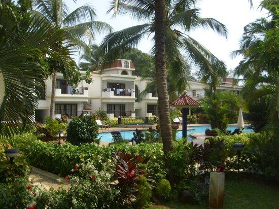 Sonesta Inns Resort: View from my balcony