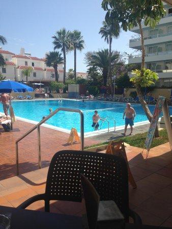 Catalonia Oro Negro : Pool area