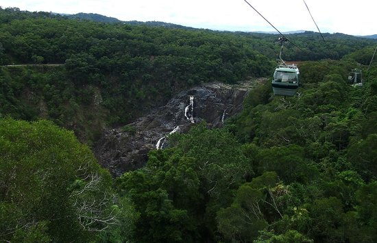Kuranda Scenic Railway: gliding over Tropical Dense Forest