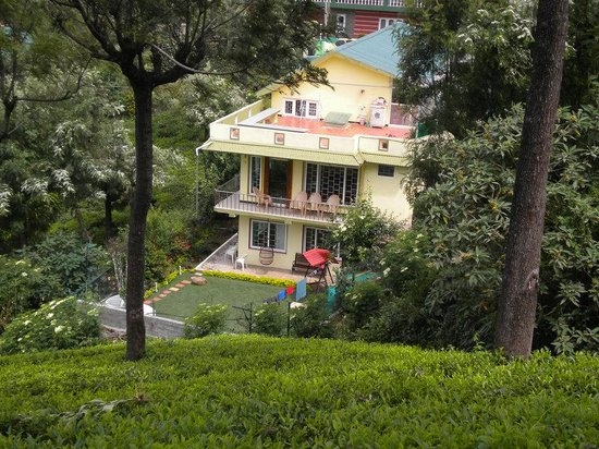 Bliss Homestay - view from the Tea gardens