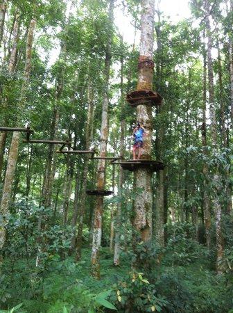 Bali Treetop Adventure Park: Flying fox