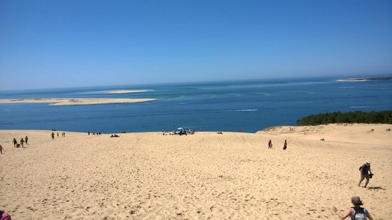 Dune du Pilat : vue d'en haut