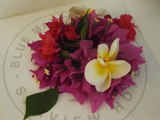 Blue Margouillat Seaview Hotel : Accueil fleuri