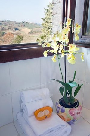 Fortezza de'Cortesi: what about a shower looking at San Gimignano towers?
