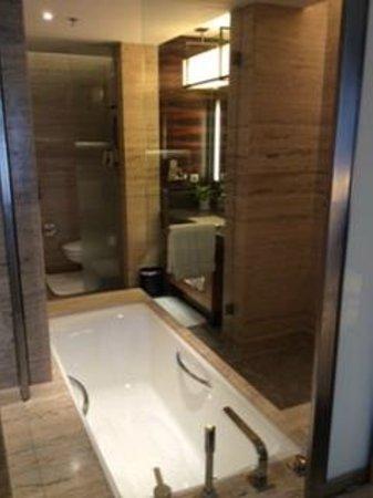 JW Marriott Hotel New Delhi Aerocity : View of bathroom from bed room