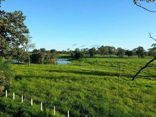 Fazenda Baia Grande: Blick von der Fazenda