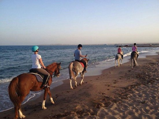 Mercure Hurghada Hotel: Riding on the beach <3