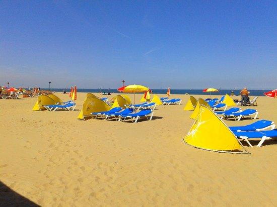 Carlton Beach The Hague / Scheveningen: Strand van Scheveningen