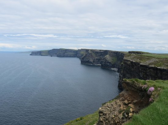 Drumcreehy Country House: Tagesausflug zu den Cliffs of Moher