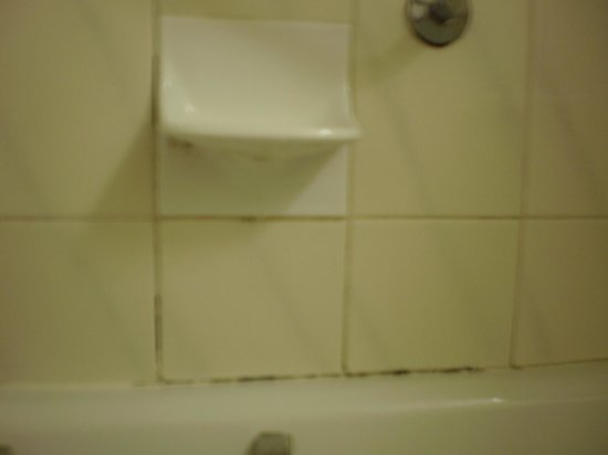 Britannia Hotel Coventry: mould in bathroom