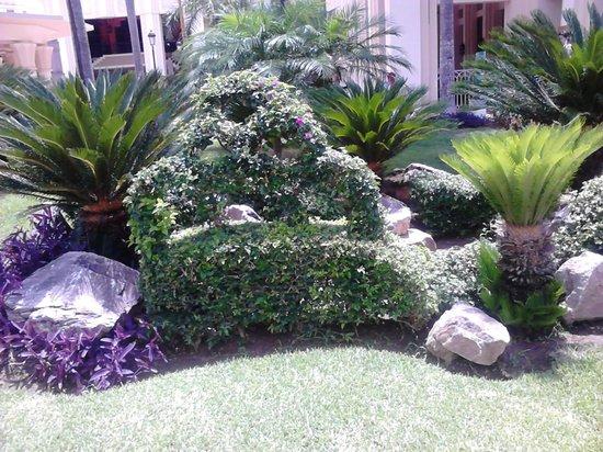 Hotel Riu Vallarta: Beautiful Gardens