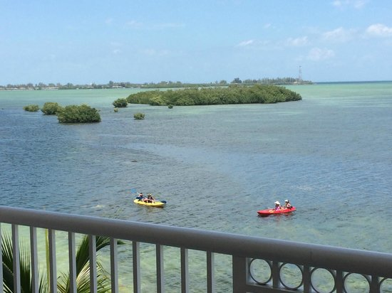 Key West Marriott Beachside Hotel : View from the room