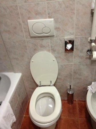 Princess Hotel : Toilette