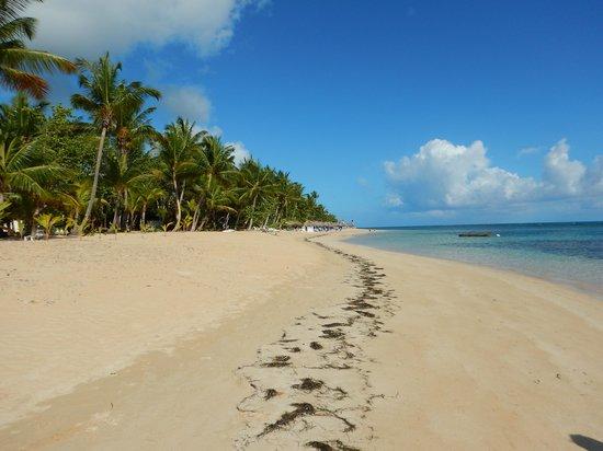 Grand Bahia Principe El Portillo : the beach at GBP. El Portillo.