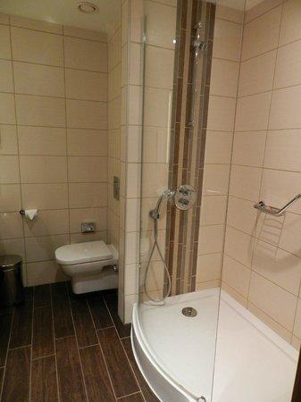 Hilton Garden Inn Istanbul Golden Horn Turkey: bathroom