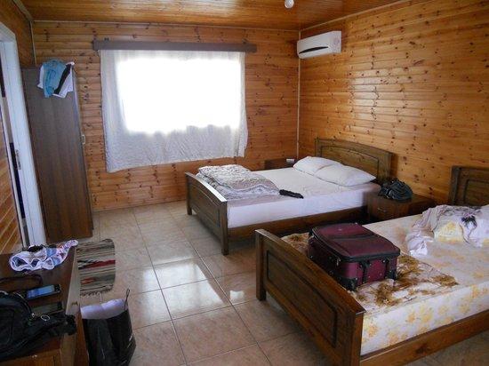 Sea Bird Motel : Room