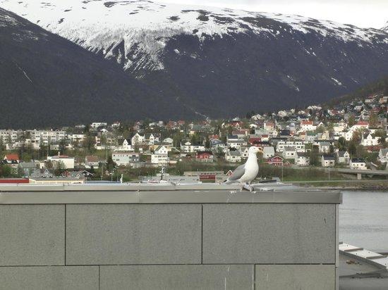 Radisson Blu Hotel, Tromso: Zimmeraussicht aus dem 10. Stock