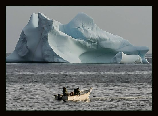 The Harbour Quarters Inn: Lots of icebergs