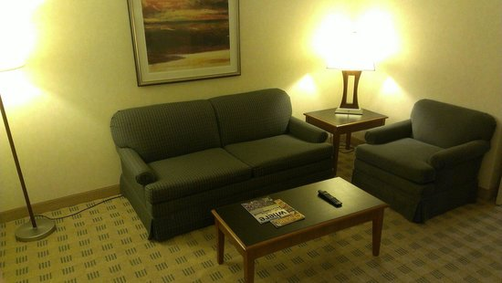 Doubletree Suites by Hilton Hotel & Conference Center Chicago / Downers Grove : Living room
