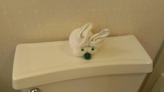 "Doubletree Suites by Hilton Hotel & Conference Center Chicago / Downers Grove : Towel animal. ""cannot use towel"""