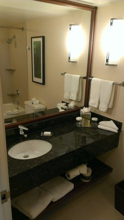 Doubletree Suites by Hilton Hotel & Conference Center Chicago / Downers Grove : Bathroom sink