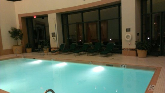 Doubletree Suites by Hilton Hotel & Conference Center Chicago / Downers Grove : Pool
