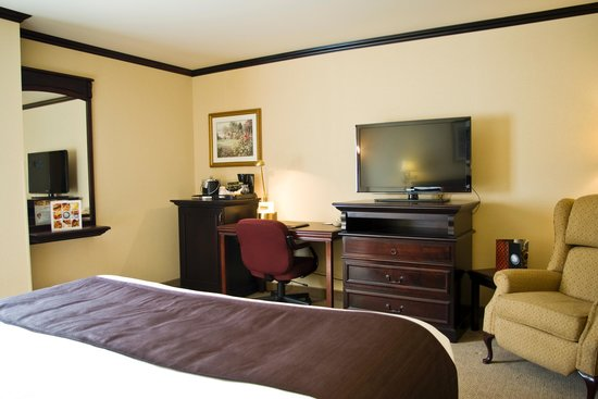 Best Western Plus City Centre/Centre-Ville: One King Bed Traditional Room