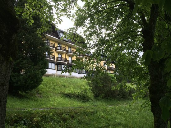 Alpenhotel Gösing: Alpen Hotel Goesing
