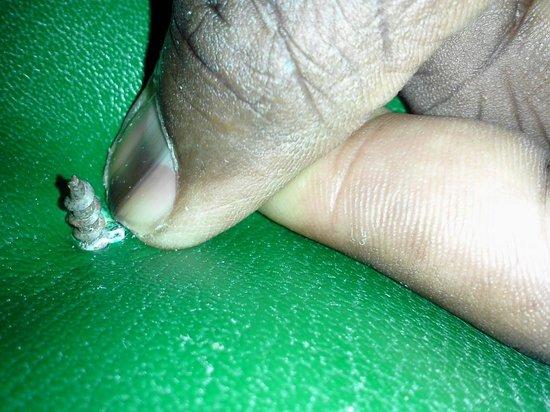Bay Gardens Inn: screw in the chair